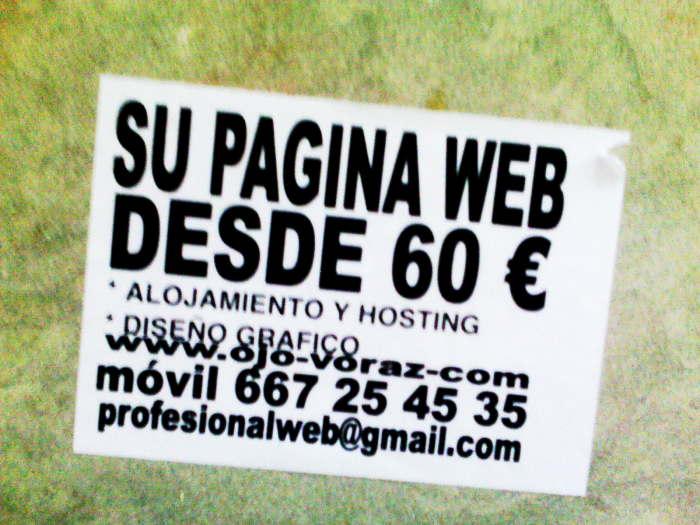 Su Web por 60 euros